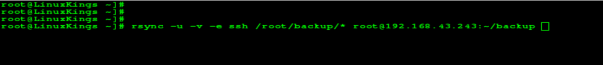How to backup Linux Local server to Remote Server?